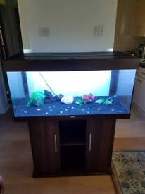 JUWEL 180 liter fish tank and Stand For Sale