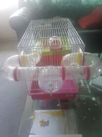 Hamster cage for Syrian hamsters