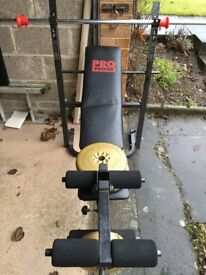 Pro Power Weight Bench and Weights