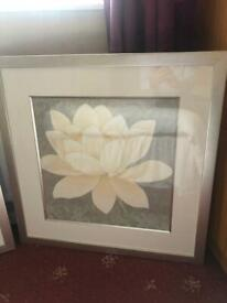 Pair John Lewis framed pictures