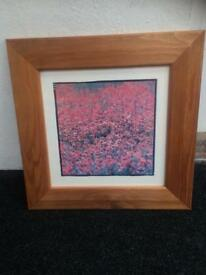 Pine Framed Poppy Picture