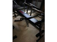 Adjustable York Dumbbell Weights Bench - Gym