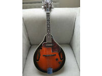 Mandolin Ibanez M510E-BS with hard case.