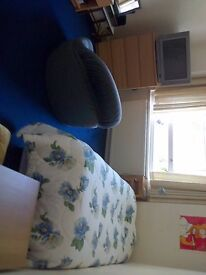 Looking for a girl for a Twin room to share in 2nd zone £100 pw .
