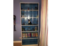 Ikea Blue Billy Bookcase - limited edition