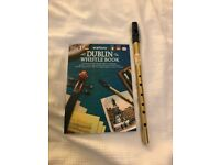 Waltons Brass Tin Whistle in D and Instructional Book