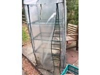 Mini Greenhouse (Gone pending collection)
