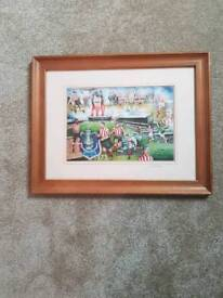 Picture sunderland afc picture