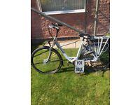 Gazelle electric bike