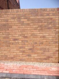 Buff Facing Bricks