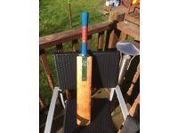 Cricket bats and gear for sale