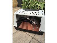 Dog crate