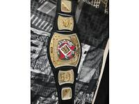 WWE REPLICA WORLD TITLE SPINNER (RATED R)