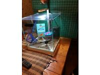 Square fish tank with accessories. (Reduced)