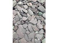 FREE blue welsh slate chippings garden