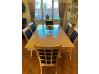 Dining table and 6 chairs set - Used (only cash in person)