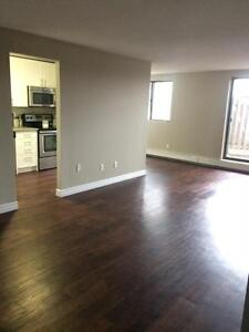 Free month on Remodeled and Upgraded 2 Bedrooms Suites! Kitchener / Waterloo Kitchener Area image 3