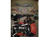 Job lot of various climbing equipment - rope, harnesses, shoes, friends, quickdraws etc.