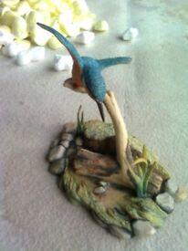 Border Fine Arts - Kingfisher