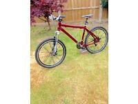 Van Nicholas Mountain bike