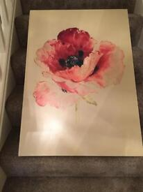 Large Poppy Picture