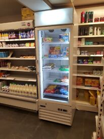 500MM UPRIGHT DISPLAY FREEZER FOR RETAIL SHOPS