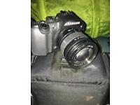 DSLR slr digital camera great for beginner photography photo
