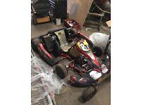 Rotax race kart