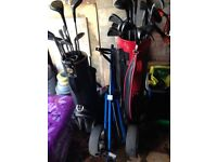 two golf bags each with various clubs and a golf cart