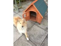 Gorgeous unused Dog Kennel for medium / small sized dogs