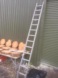2 x ladders for sale 4.6 m / 3.47m. Both good. See prices . Can deliver.