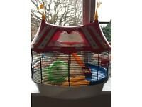 Hamsters with circus theme cage