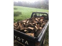 Seasoned oak logs