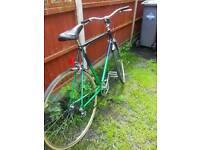 Men green 28'' bicycle