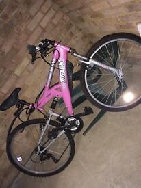 Mountain Bike (woman's )