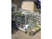 Excellent condition large glass greenhouse.