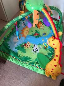 Fisherprice Rainforest baby gym