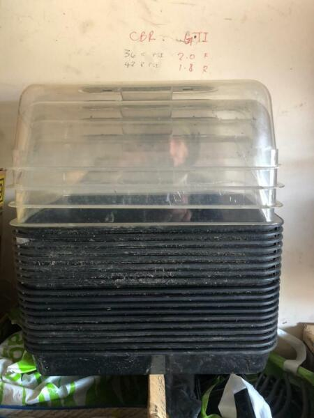 PROPAGATING PLANT TRAYS AND TOPS IDEA FOR SEEDS GARDENING GREENHOUSE COLLECT KIRKCALDY for sale  Kirkcaldy, Fife
