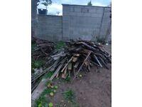 Wood for burning