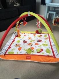 Play Gym / Mat