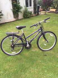 Original Spec Specialized Ladies Mountain Bike