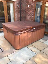 Teton XLS ALPS Spas hot tub