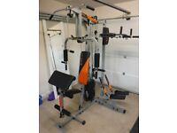 Multi gym (v-fit herculean python multi gym)
