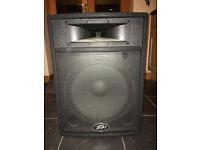 Peavey ST-15 Speaker