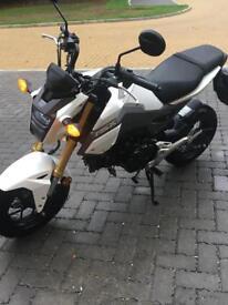 Honda MSX motorcycle
