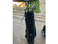 Full set of mixed clubs in Hippo bag