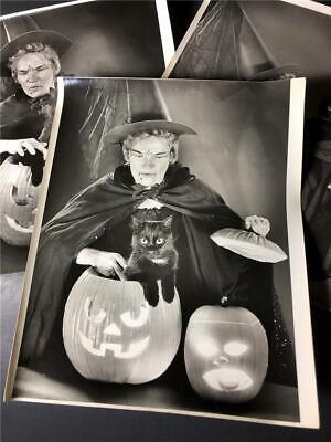 Vtg Lot 3 Halloween Photos 8x10 Original Witch Black Cat Pumpkin Jack o - Halloween Photos Pumpkins