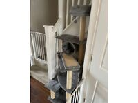 Cat Tree for sale (Collection Only)