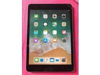 iPad 2 mini 16GB
