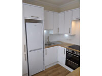 Nice one bedrom flat for rent. Available end July 21